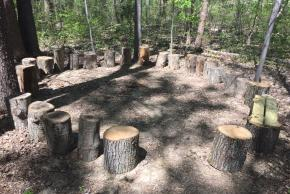 log circle outside